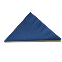 Dark Blue Napkin Lunch 2 Ply - Pack Of 100