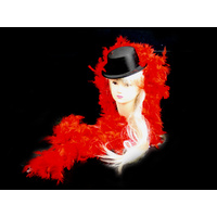 Red Feather Boa - 2m