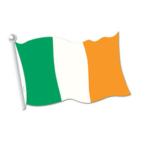 Irish Flag Cutout - 45cm*