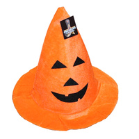 Plush Pumpkin Witches Hat